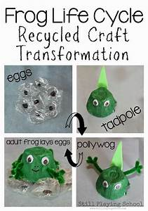 Plant and Animal Lifecycles: FREE Printables, Crafts and ...