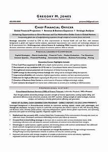 cfo sample resume executive resume writer chicago With cfo resume writing services