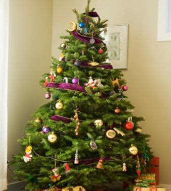 can you still buy xmas tensil an eco friendly tree this the new ecologist
