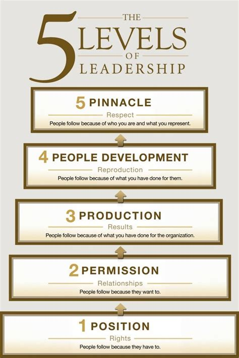 levels  leadership leadership pinnacle chart