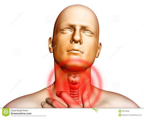 Images Of Throat Sore Throat Anatomy Human Anatomy Diagram