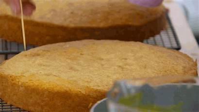 Bake Giphy Gifs