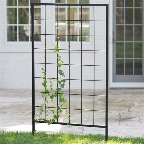 Metal Trellis belham living danbury 39 in metal trellis trellises at