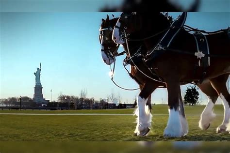 iconic budweiser  tribute ad   aired