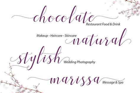 Beautiful Scripts And Fonts menttion beautiful script fonts wooskins