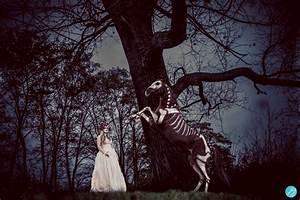 Schöne Halloween Bilder : pferdefotos cavallo leser zeigen halloween bilder bei ~ Eleganceandgraceweddings.com Haus und Dekorationen