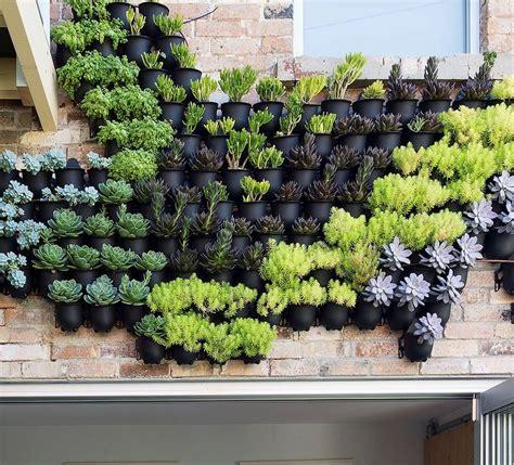 Vertical Wall Garden Planter by Outdoor Vertical Wall Garden Planters By Marquis Dawe