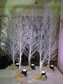These 10ft White Birch Trees Are Perfect For A Winter