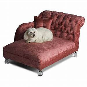 wwwtheclassydogcom posh dog bed for a little princess With classy dog bed