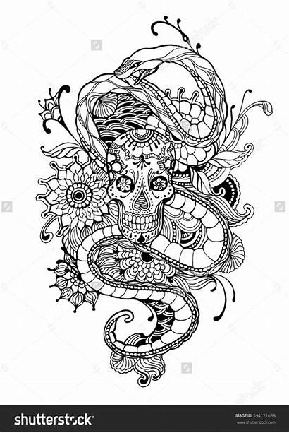Coloring Pages Skull Snake Adult Vector Shutterstock