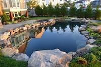 interesting patio pond design ideas Unique Pool Design: Bringing Adirondack Experience Back Home