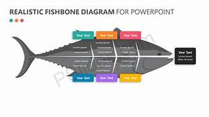 35 Ishikawa Diagram Template Powerpoint