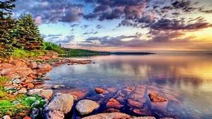 Landscape, Nature, Scotland, Lake, Stone, Forest, Green, Trees