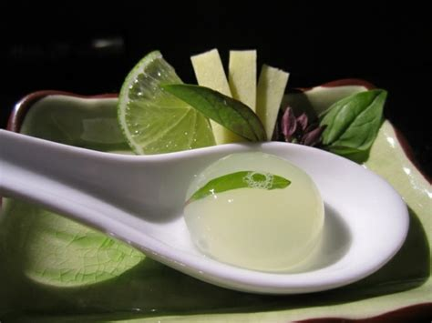 cuisine moleculaire lyon resto cuisine moleculaire 28 images cuisine restaurant