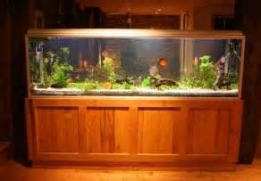 aquarium unterschrank bauen aquarium unterschrank bauen 187 anleitung in 6 schritten