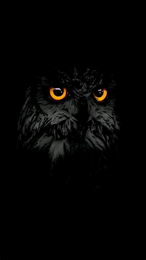 Owl Phone Wallpaper by Black Owl Iphone Wallpaper Iphone Wallpapers