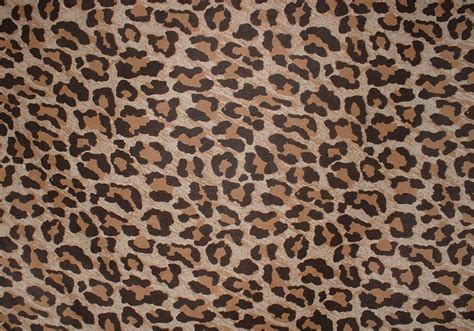 Free Animal Print Wallpaper Background - leopard print pattern background