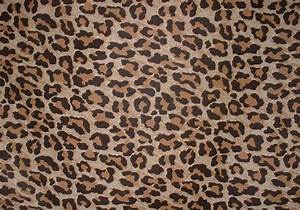 Free Leopard Print Background Vector - Download Free ...