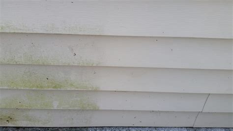 clean mildew  vinyl siding outdoor room ideas
