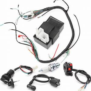 250cc Wiring Harness