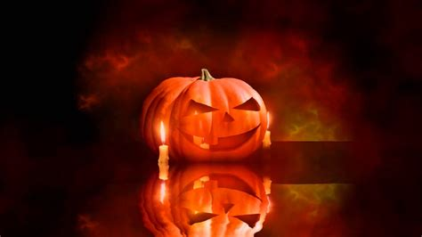 Halloween Animated Wallpapers  Festival Collections