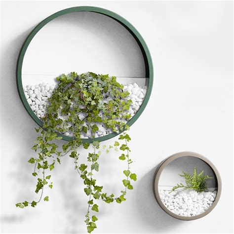 Product Of The Week Wall Hanging Glass Planters by Wall Planter Apollobox