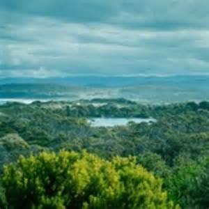 Risultato immagine per tasmania panorama