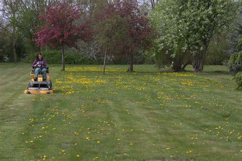 Gärtnerin Im Garten Und Landschaftsbau