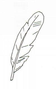 bird outlines google search craftiest pinterest