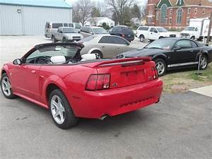 1999 Ford Mustang GT for Sale in Dayton, Indiana Classified | AmericanListed.com