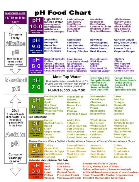 food herbs chart benefits byzantineflowers