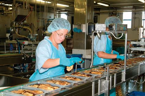 cuisine industrie food industry steam for food processing sanitation