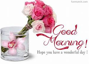good morning images in purple and pink roses - Google ...
