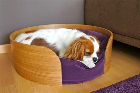 faire sa cuisine ikea bien choisir le panier du chien baikasblog