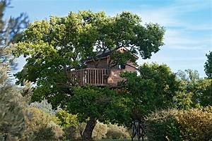 Tree Heart Designs These Spectacular Tree Houses Redefine Small Space Living