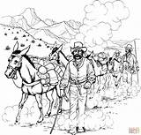 Coloring Forty Caravan Pages Niner Mule Rush Camel Gold Donkeys Printable 1849 California Popular Drawing Definition Main Miner Took Supercoloring sketch template