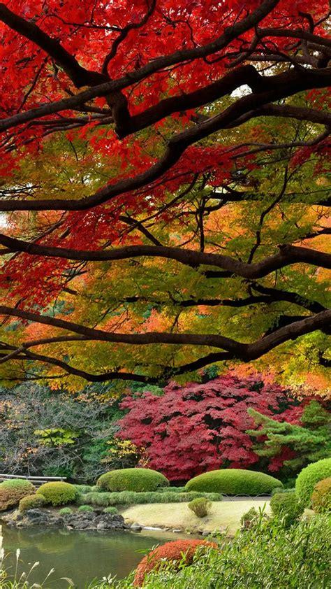 Beautiful Fall Leaves Iphone Wallpaper by Beautiful Garden Lake On Autumn Fall Season Iphone