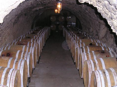 Wine Cellar : Wine Cellar