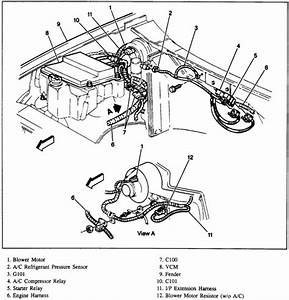 1998 Chevy S10 Engine Diagram Starter