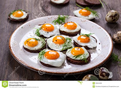 canape oeuf canapes d 39 oeuf de caille photo stock image 49644495