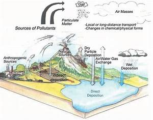 Simple Water Pollution Diagram