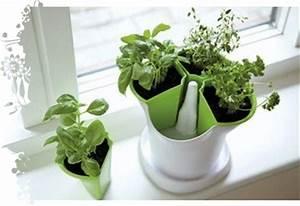 Herbes Aromatiques En Pot : pot herbe ar matique hydrozone ~ Premium-room.com Idées de Décoration