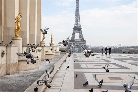 'It's eerie': Capturing the emptiness of Paris, a city ...
