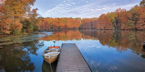 Lake Marion Sc Boat Rentals by Santee Cooper Lakes Marion And Moultrie