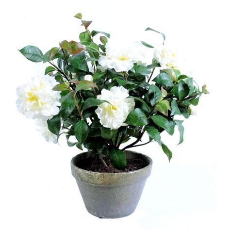 camelia pot terre composition artificielle fleurs plantes artificielles