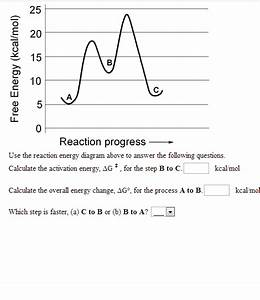 Solved  Use The Reaction Energy Diagram Above To Answer Th
