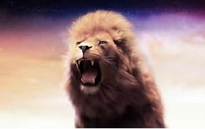 Roaring Lion wallpaper...