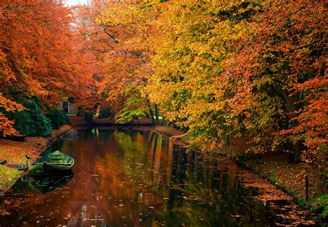 autumn, Fall, Landscape, Nature, Tree, Forest Wallpapers ...