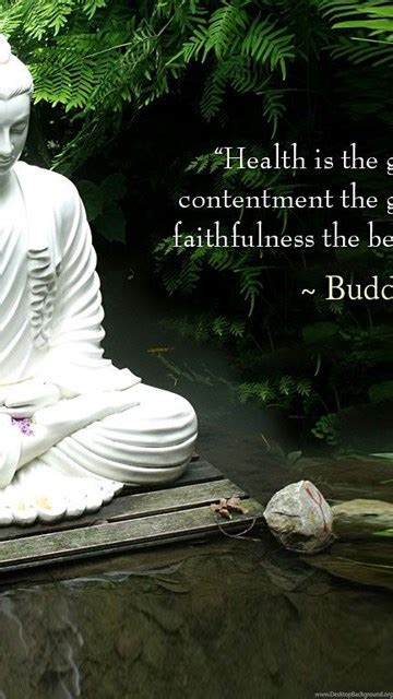 top gautama buddha quotes hd wallpapers daily