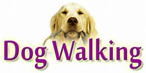 unleash the niche unleash your niche With dog walking services near me